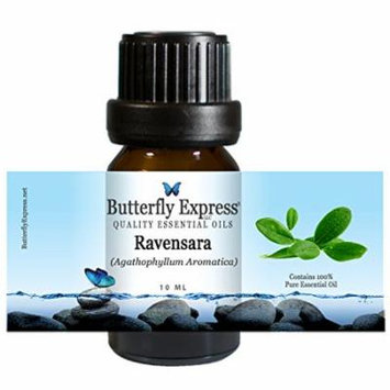 Ravensara Essential Oil 10ml - 100% Pure - by Butterfly Express