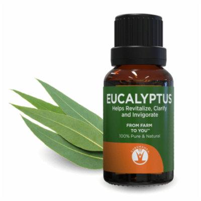 GuruNanda Aromatherapy 100% Pure & Natural Essential Oil, Pure Eucalyptus, .5 fl oz