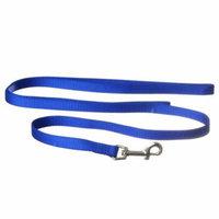 Coastal Pet Nylon Lead - Blue 6' Long x 5/8