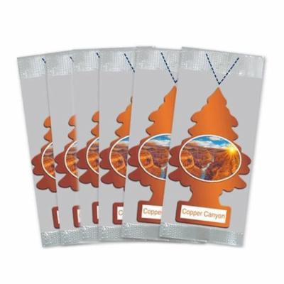 Little Trees Car Air Freshener 6-Pack (Copper Canyon)