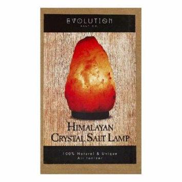 Evolution Salt Small Himalayan Crystal Salt Lamp, 1 ea