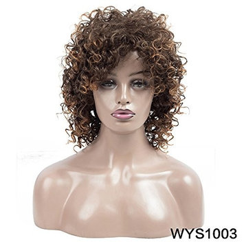 VQueen Synthetic Curly Wigs for Black Women Short Curly Hair Wigs Heat Resistance Fiber T2/30# 180g