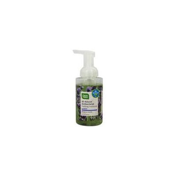 Natural Antibacterial Foaming Hand Wash Lavender & Absolute - 9.5 fl. oz. by CleanWell (pack of 12)