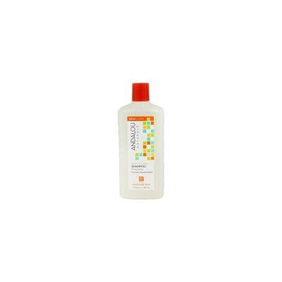 Argan Oil & Shea Moisture Rich Shampoo - 11.5 fl. oz. by Andalou Naturals (pack of 2)