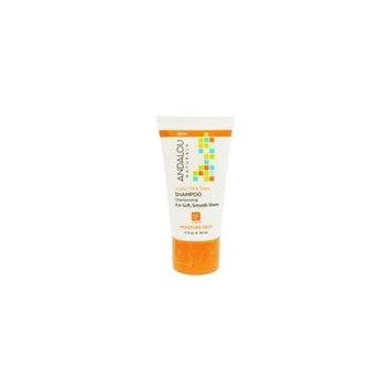Moisture Rich Shampoo Argan Oil & Shea - 1.7 fl. oz. by Andalou Naturals (pack of 12)