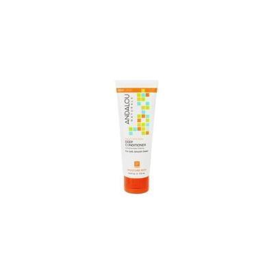 Argan Oil & Shea Moisture Rich Deep Conditioner - 5.8 fl. oz. by Andalou Naturals (pack of 3)