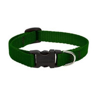 Lupine Custom Embroidered Dog Collar - Green - 1 x 12-20 in