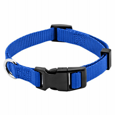 Westminster Pet Products 6 Packs PE5/8x16 BLU Dog Collar
