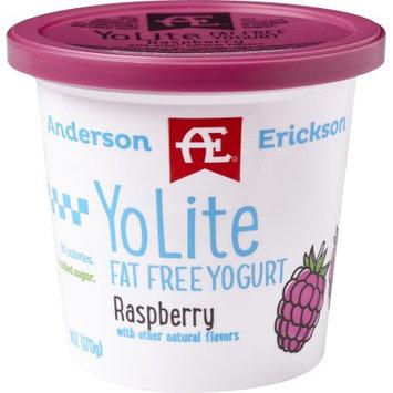 Anderson Erickson Dairy AE RASPBERRY YO-LITE FAT FREE YOGURT