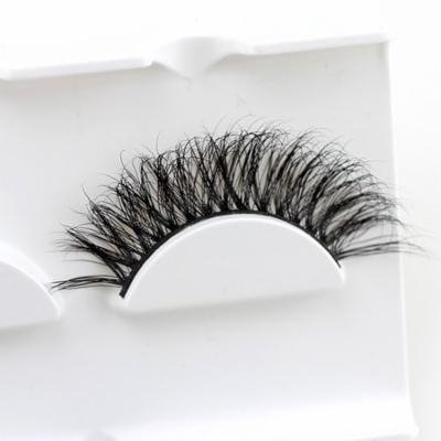 Girl12Queen False Eyelashes Extension Soft Ultra Thick Long Lashes Volume Women Makeup Tool