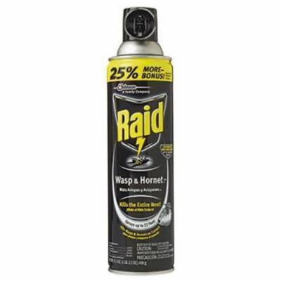 Raid 17.5 OZ Aerosol Wasp & Hornet Spray 2PK