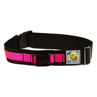Squishy Face Studio Hands Free Dog Leash Belt