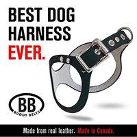 ORIGINAL DURABLE Buddy Belt Classic LEATHER Dog Harness