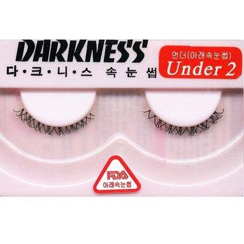 Darkness False Eyelashes Under 2