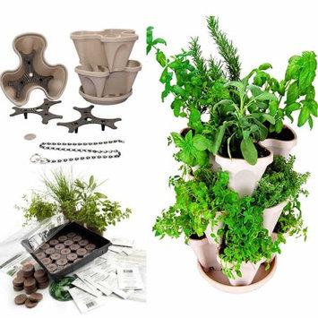 Herbkits.com Indoor Medicinal Herb Garden Seed Starter Kit + Stackable Garden Planter - Gray