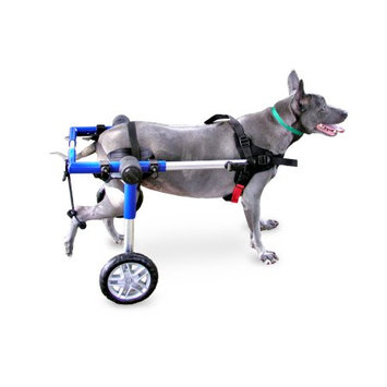Handicappedpets.com Dog Wheelchair For Medium Dogs 26-69 lbs Blue - By Walkin' Wheels