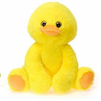 DD 2284650 9.5 in. Sitting Duck with Picture Hang Tag - Case of 24
