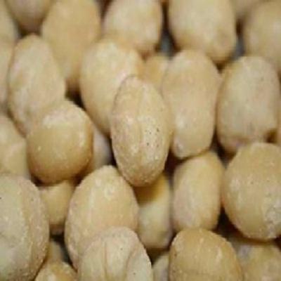 Nuts Macadamia Nuts Shelled 5 Each 5 lb.
