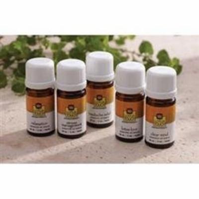 Lotus Touch Essential Oils - Sweet Orange - 10 ml