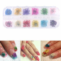 12Colors Nail Decoration Real Dried Flower Manicure Gel Tips Design Accessories & Box,Nail Decoration, Nail Accessory