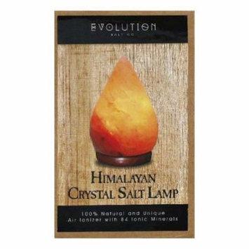 Evolution Salt Himalayan Crystal Salt Lamp, 1 Ea