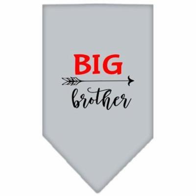 Big Brother Screen Print Bandana Grey Small