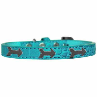 Arrows Widget Croc Dog Collar Turquoise Size 10