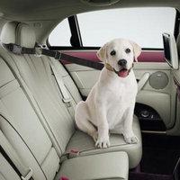 Excelvan Adjustable Universal Pet Car Seat Belt Dog Pulling Rope