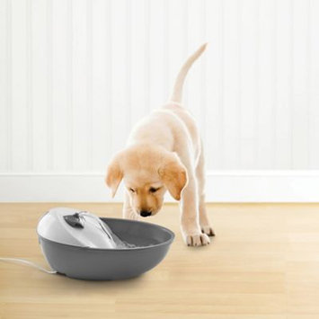 Pawslife 60 oz. Pet Drinking Fountain