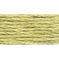 Anchor Six Strand Embroidery Floss 8.75 Yards-Fern Green Light 12 per box