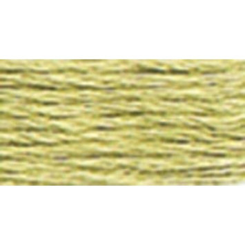 Anchor Six Strand Embroidery Floss 8.75 Yards-Fern Green Light 12 per box