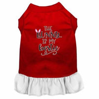 Bunny is my Bestie Screen Print Dog Dress Red with White XS (8)
