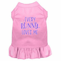 Every Bunny Loves me Screen Print Dog Dress Light Pink XXL (18)