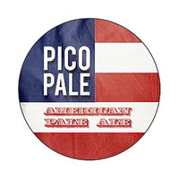 Pico Brew PicoPale PicoPak