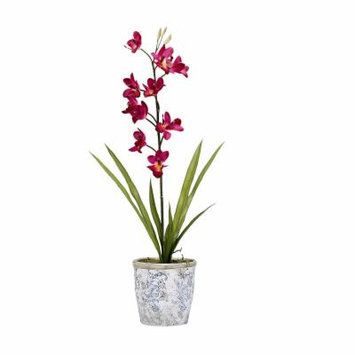 Purple Cymbidium Orchids in Ceramic Planter, Purple White, One Size
