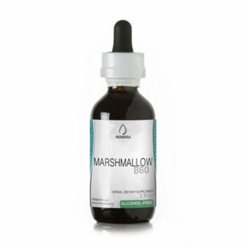 Marshmallow Alcohol-FREE Herbal Extract Tincture, Super-Concentrated Organic Marshmallow (Althaea Officinalis)