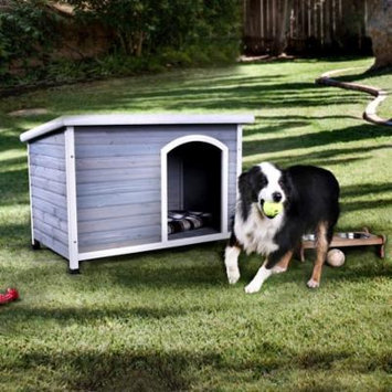Furniture of America Gayle Contemporary Dog House