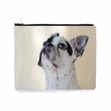 White French Bulldog Puppy - 6.5