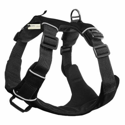 Paws & Pals Pet Harness for Dogs Cats - Padded Nylon Mesh Vest, Black, One Size, 840345111845