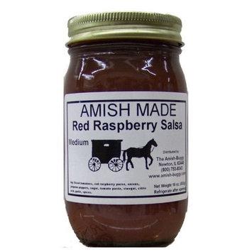 Amish Salsa Hot Garden - Two-16 Oz Jars [Garden Hot]