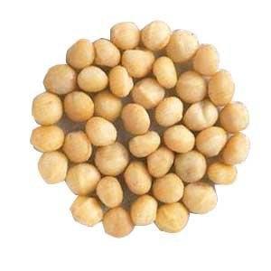 Candy Expressnyc Macadamia Nuts, 3LBS
