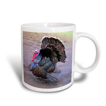 3dRose Wild Turkey, Ceramic Mug, 11-ounce