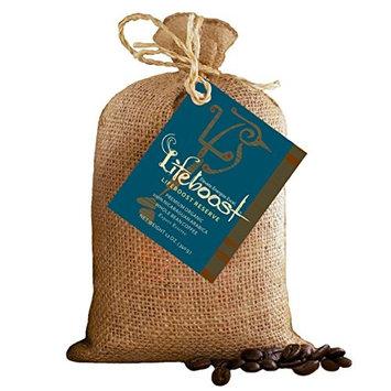 Single Origin Organic Coffee Beans By LifeBoost - Gourmet Fair Trade Nicaragua Coffee Beans - 12 oz Whole Bean Dark Roast [Bean Dark Roast]