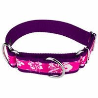 Country Brook Petz | 1 1/2 Inch Pink Hawaiian Exclusive Martingale Dog Collar