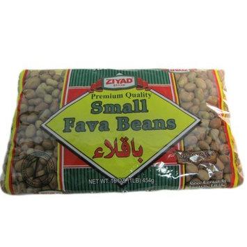 Ziyad Fava Beans, Small, 16 Ounce