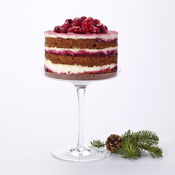 Gingerbread Cranberry Cake