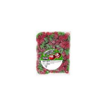 Sour Twin Cherries Gummy Candy 2.2 Pound Sanded Cherry Gummi