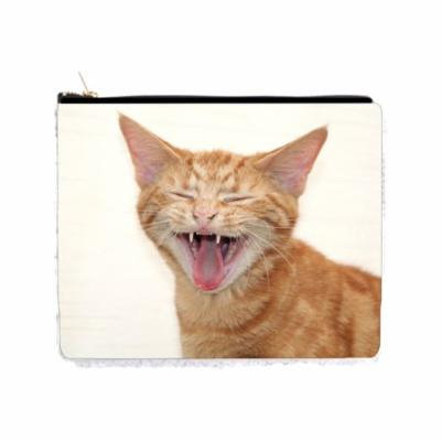 Laughing Kitten - 2 Sided 6.5