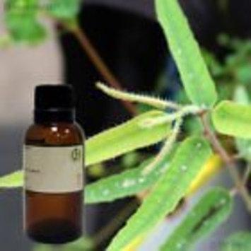 Lemon Eucalyptus – 1 fl oz (30 ml) Glass Bottle w/ Glass Dropper – 100% Pure Essential Oil – GreenHealth