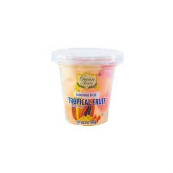 Golden Beach, Inc. Tropical Fruit In Ls